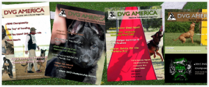 DVG magazine